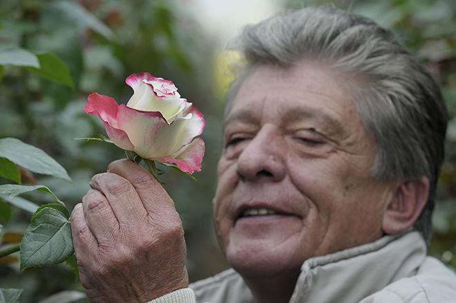 Piel para detectar Alzhéimer
