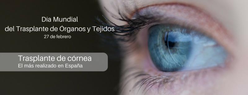 Trasplante de córnea, el más realizado en España
