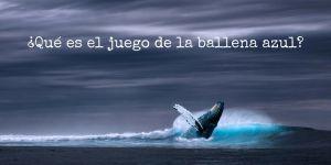 El juego de la ballena azul. Qué es y cómo evitar que los jóvenes participen en él
