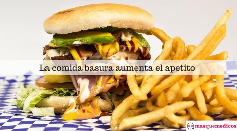 La comida rica en grasas inflama el cerebro y aumenta el apetito