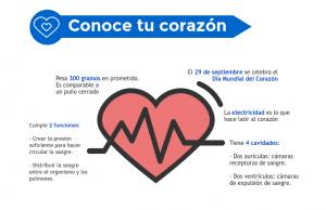 Qué hacer para cuidar la salud de tu corazón