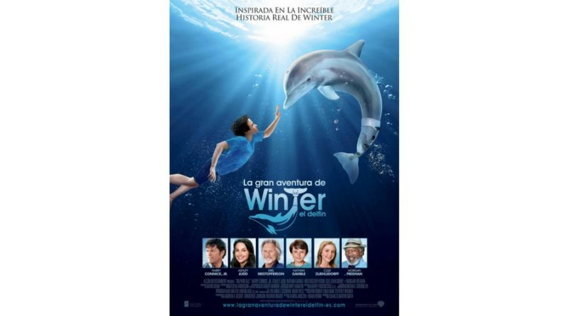 winter delfin pelicula