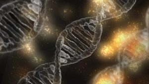 Envejecen las células y dan origen a las enfermedades