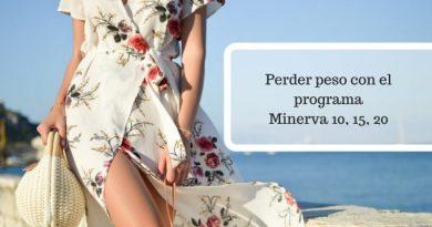 Programa Minerva 10 15 20