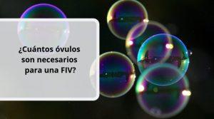 ¿Cuántos óvulos son necesarios para una FIV?