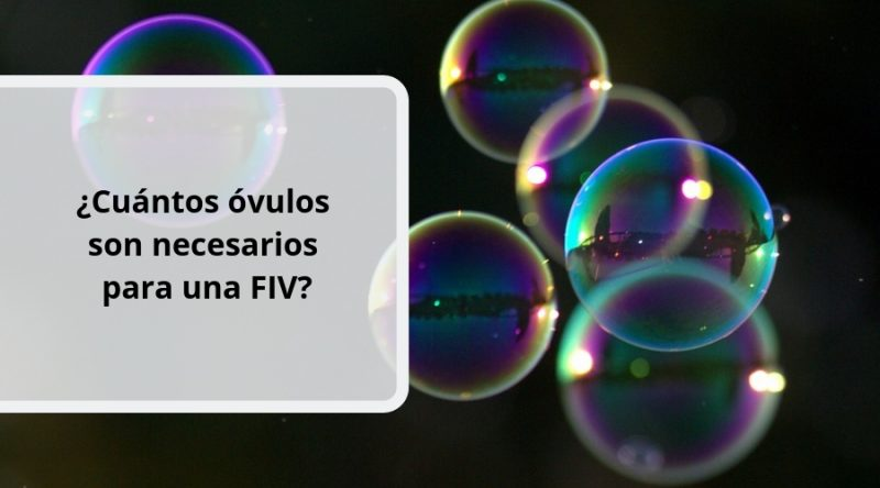 ¿Cuántos óvulos son necesarios para una FIV_