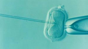 Bebés modificados genéticamente por científicos chinos