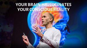 Your brain hallucinates your conscious reality. Importancia de la consciencia