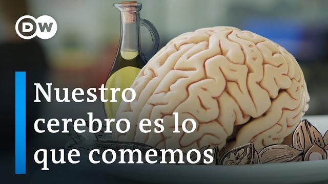 Nuestro cerebro es lo que comemos. Documental
