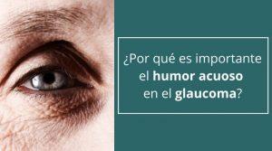 ¿Por qué es importante el humor acuoso en el glaucoma?