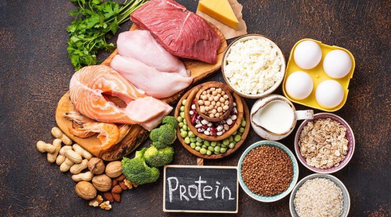 Dieta proteinada: fases y objetivos