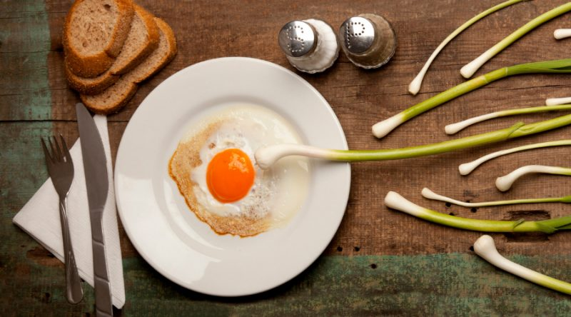Alimentación y fertilidad